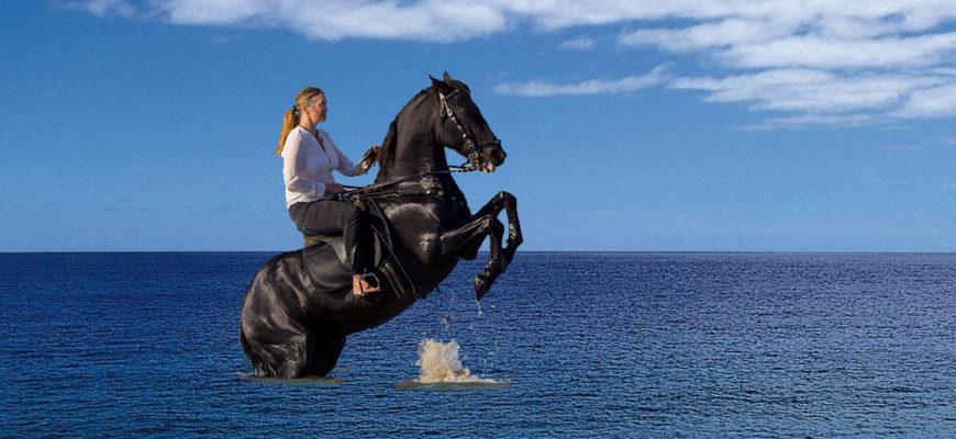 Коня на скаку остановит.., а что дальше? 1